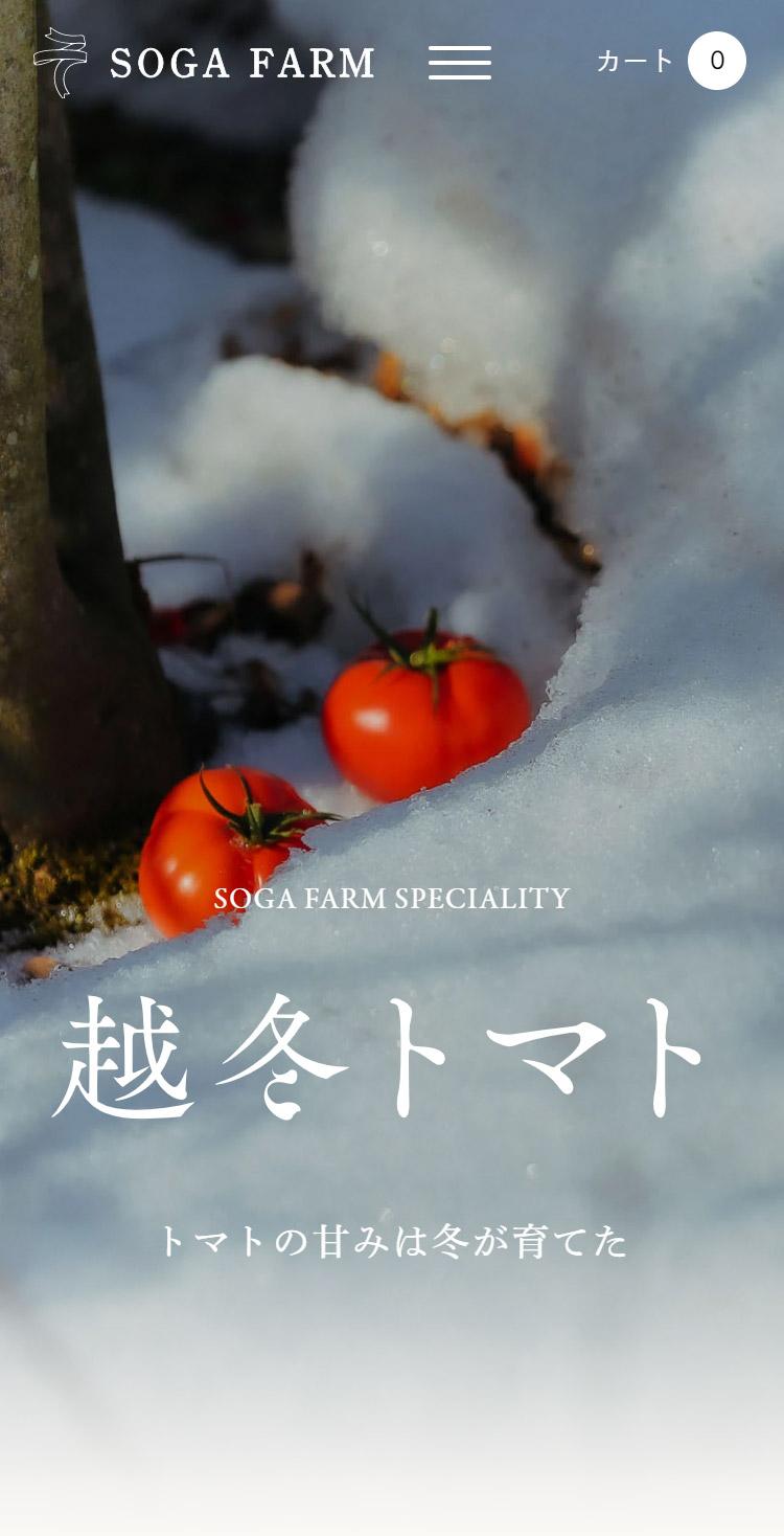 フルーツトマト専門農家   曽我農園の通販・オンラインショップ