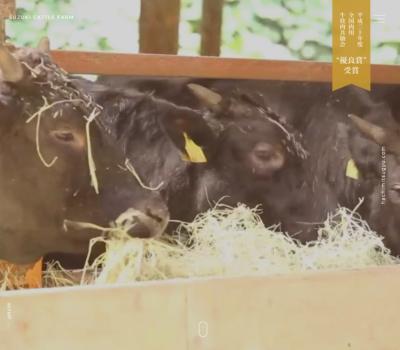 石川はちみつ牛|有限会社鈴木畜産