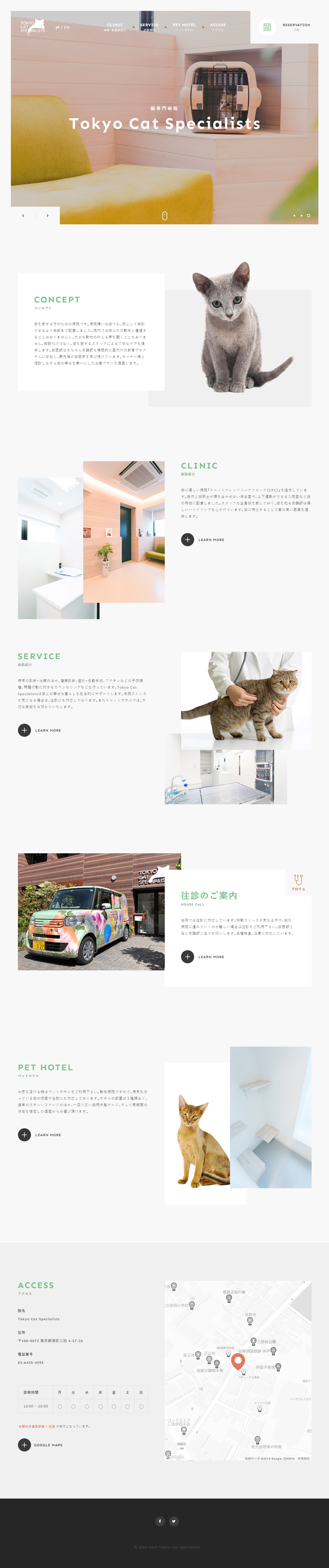 Tokyo Cat Specialists | 猫の専門病院